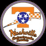 Nashville_Cat_sm